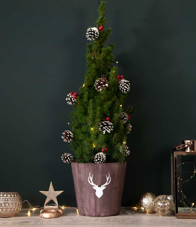 Mini Decorated Tree<br>with Lights