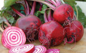 Beetroot & Chard Seeds