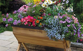 Vegetable Planters, Grow Trugs & Raised Beds