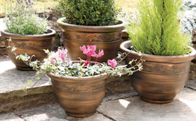 Other Pots & Planters