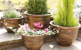 Decorative Patio Containers