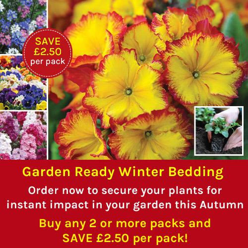 Garden Ready Winter Bedding