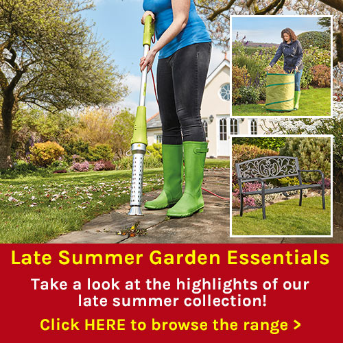 Late Summer Garden Essentials
