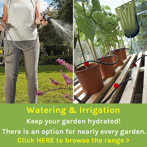 Garden Irrigation and Watering