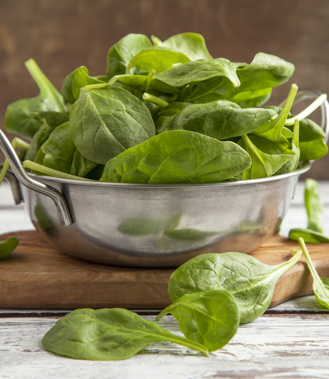Spinach 'Renegade'<br>