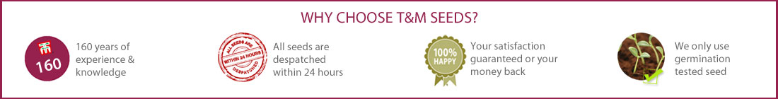 Why Choose T&M Seeds
