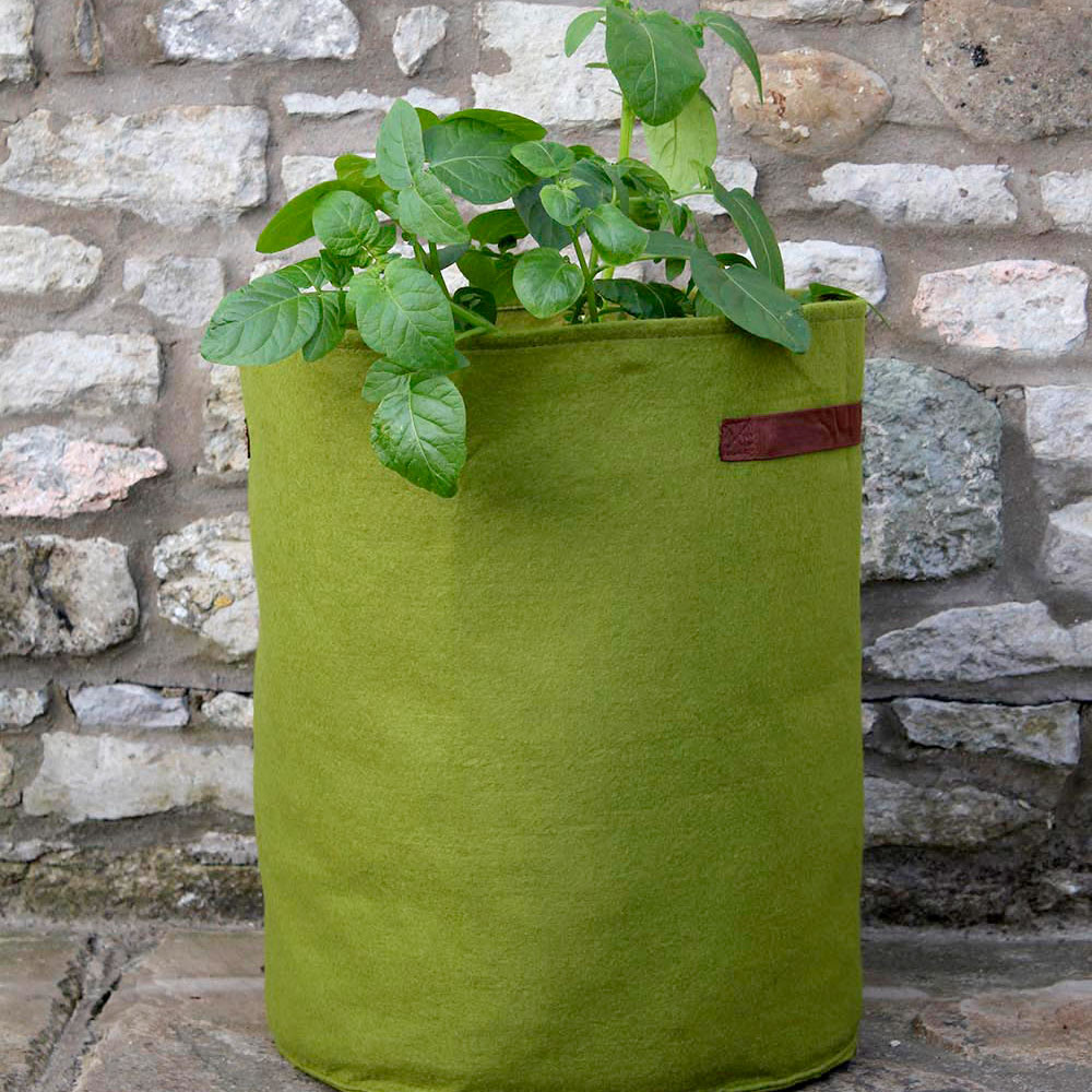 Image of Vigoroot Pots Pack Of 3 X 10 Litre