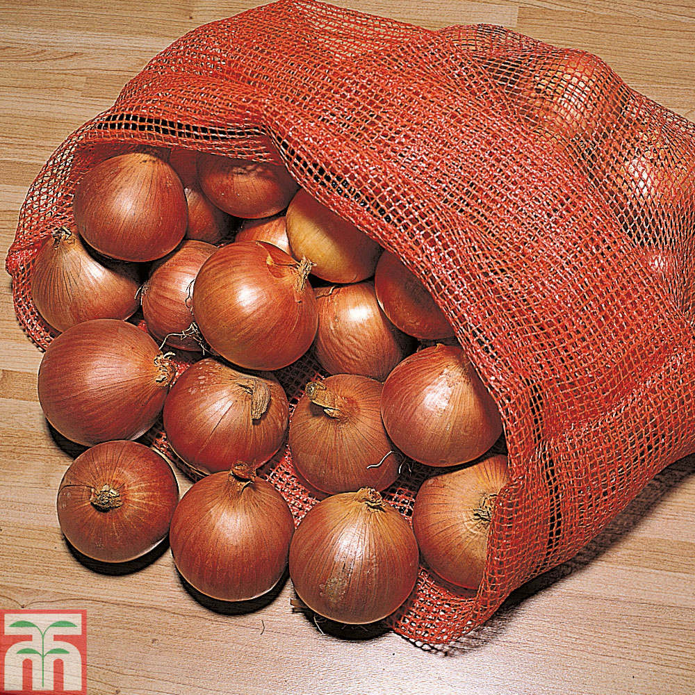 Image of Onion Bags