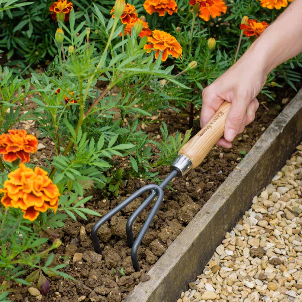 Image of Kent & Stowe Carbon Steel Hand 3 Prong Cultivator