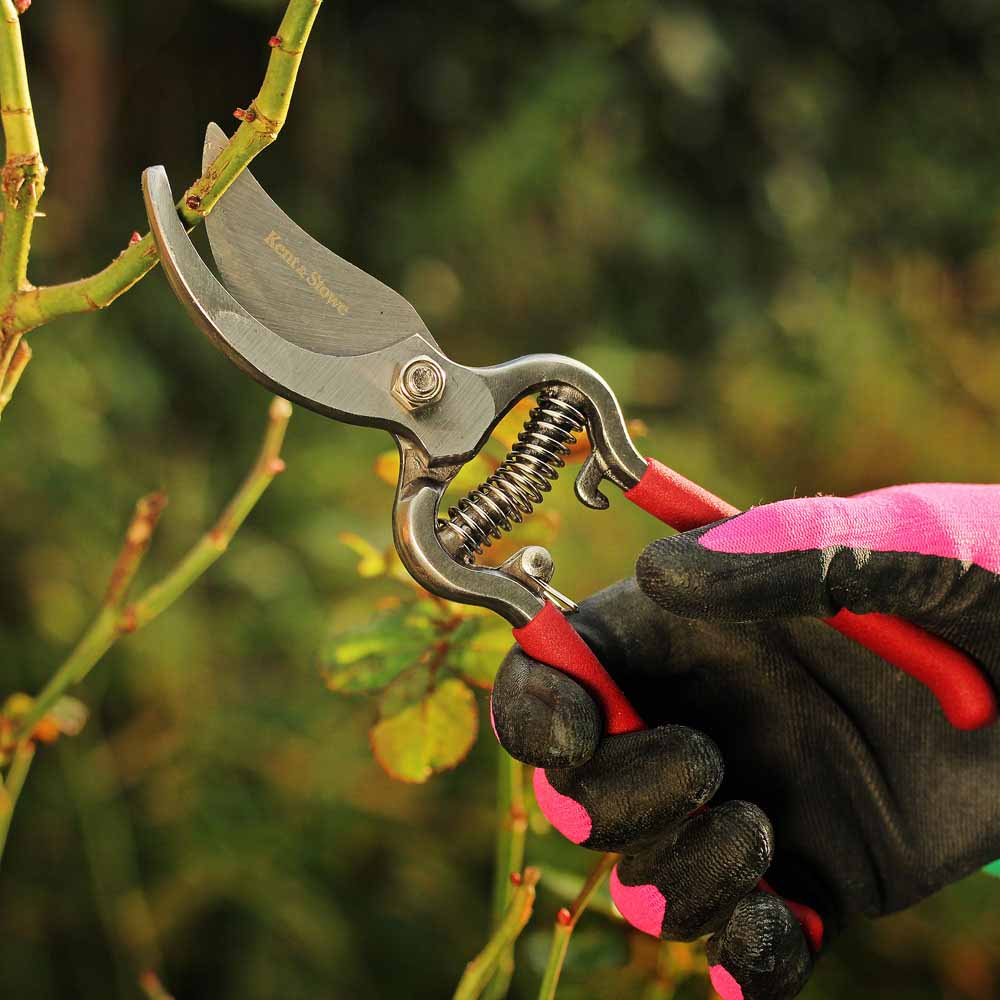 Image of Kent & Stowe Traditional Bypass Secateurs