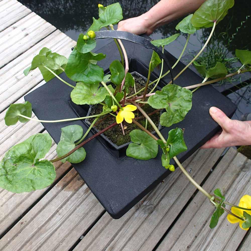 Image of Floating Aquatic Planting Basket 35cm