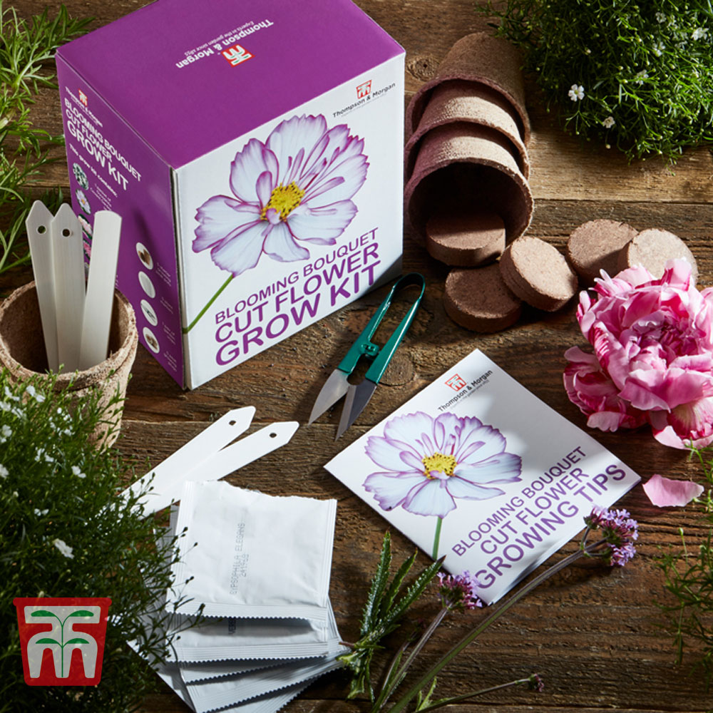 Image of Blooming Bouquet Cut Flower Growing Kit