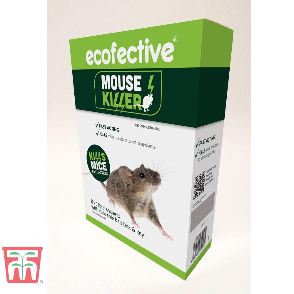 Image of ecofective Mouse Killer, Bait Box & Key