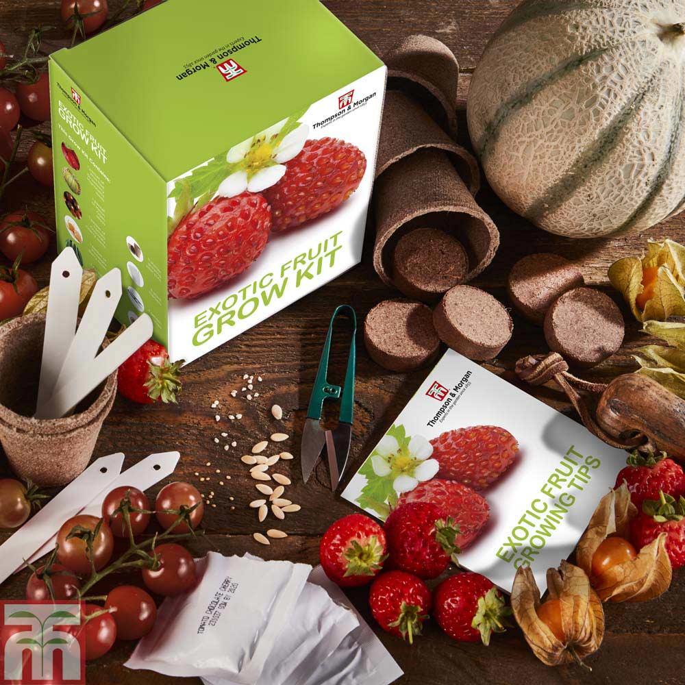 Image of Exotic Fruit Growing Kit