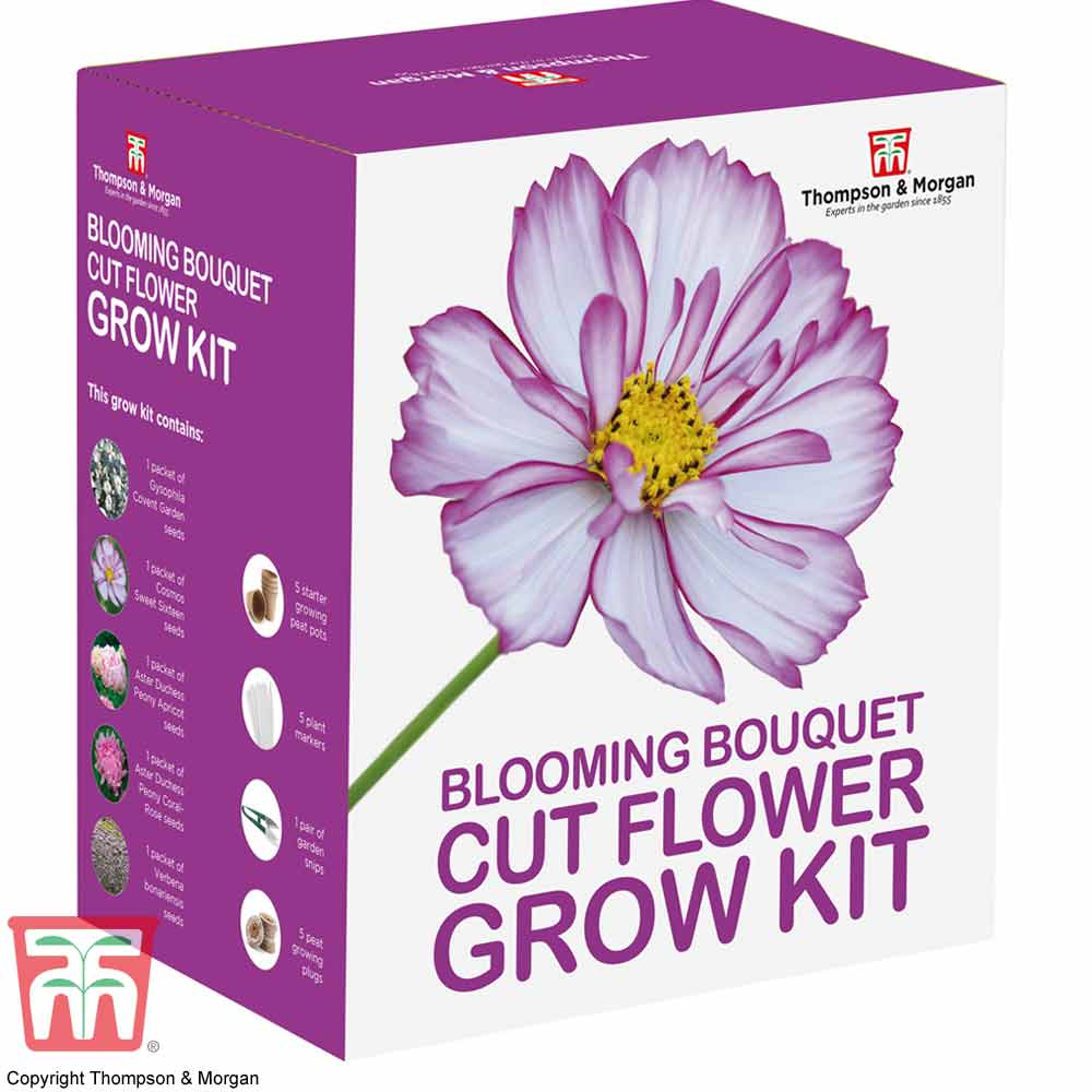 Image of Blooming Bouquet Cut Flower Growing Kit - Gift