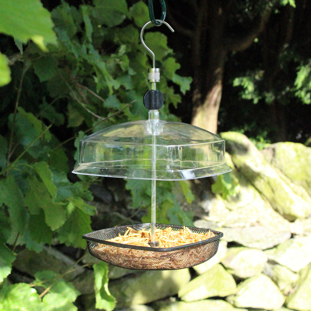 Image of Kingfisher Hanging Mealworm Bird Feeder With Plastic Canopy