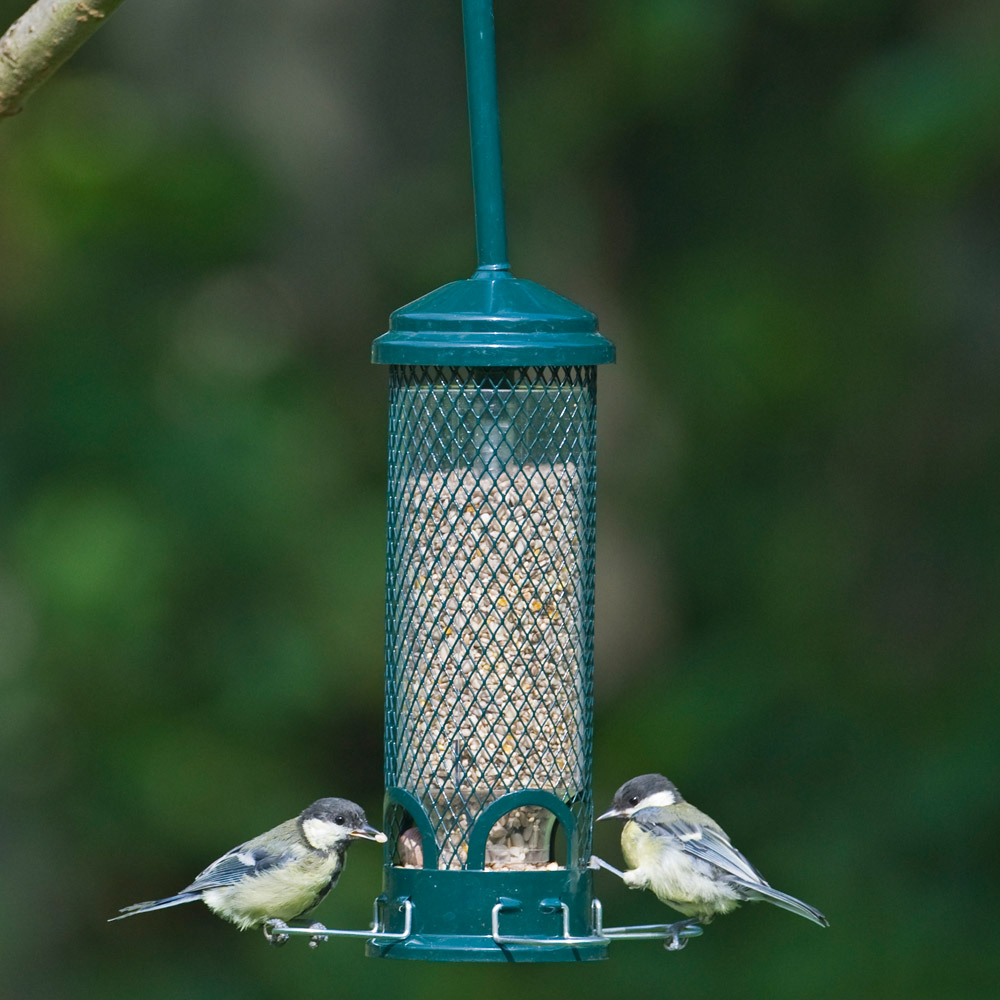 Image of Brome Squirrel Buster Mini Seed Feeder