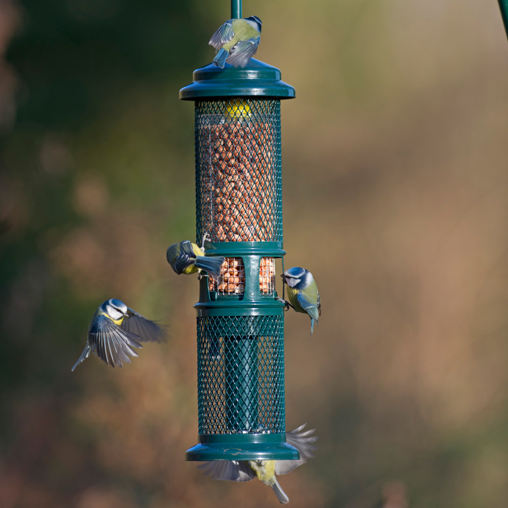 Image of Brome Squirrel Buster Peanut Feeder