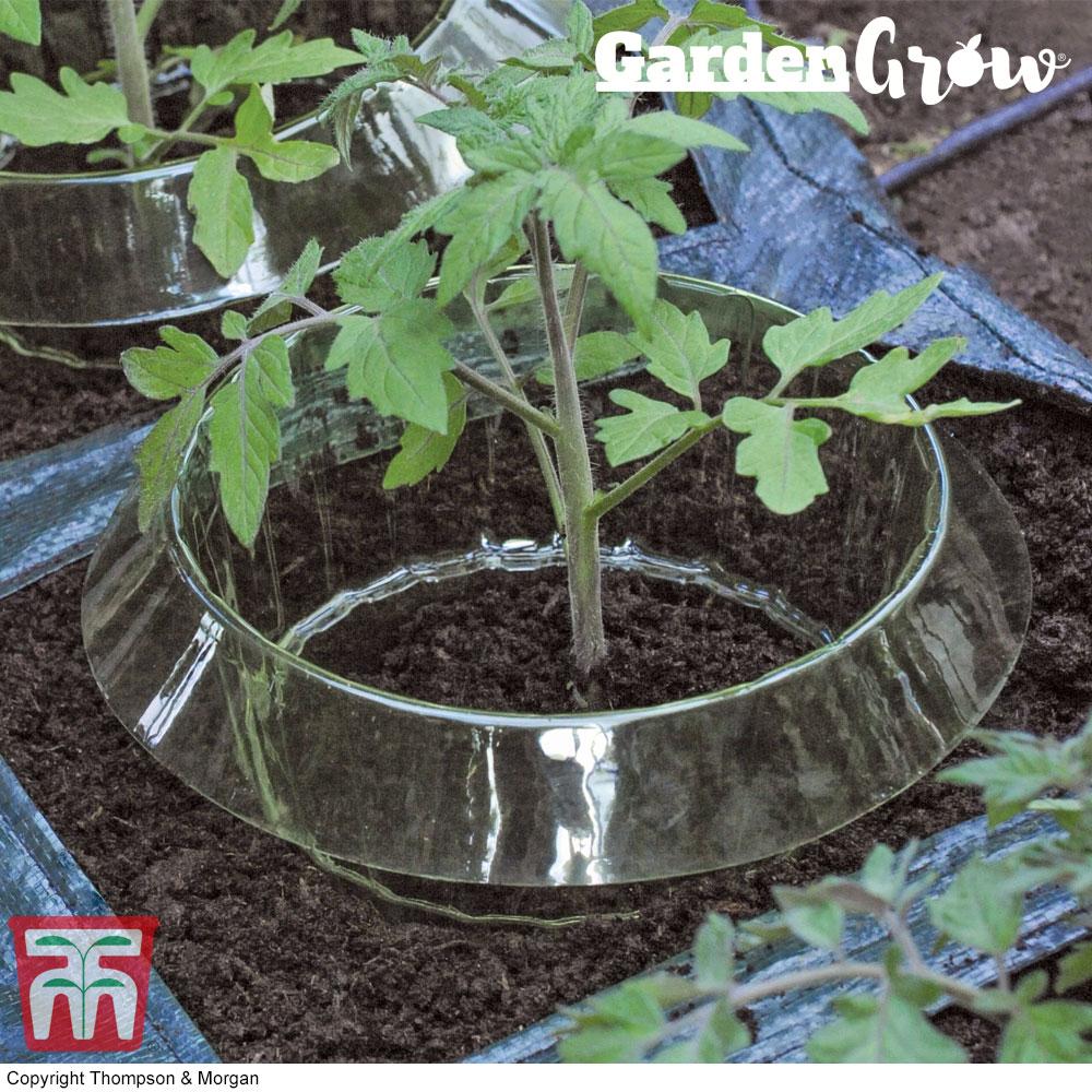 Image of Garden Grow Snail Collar