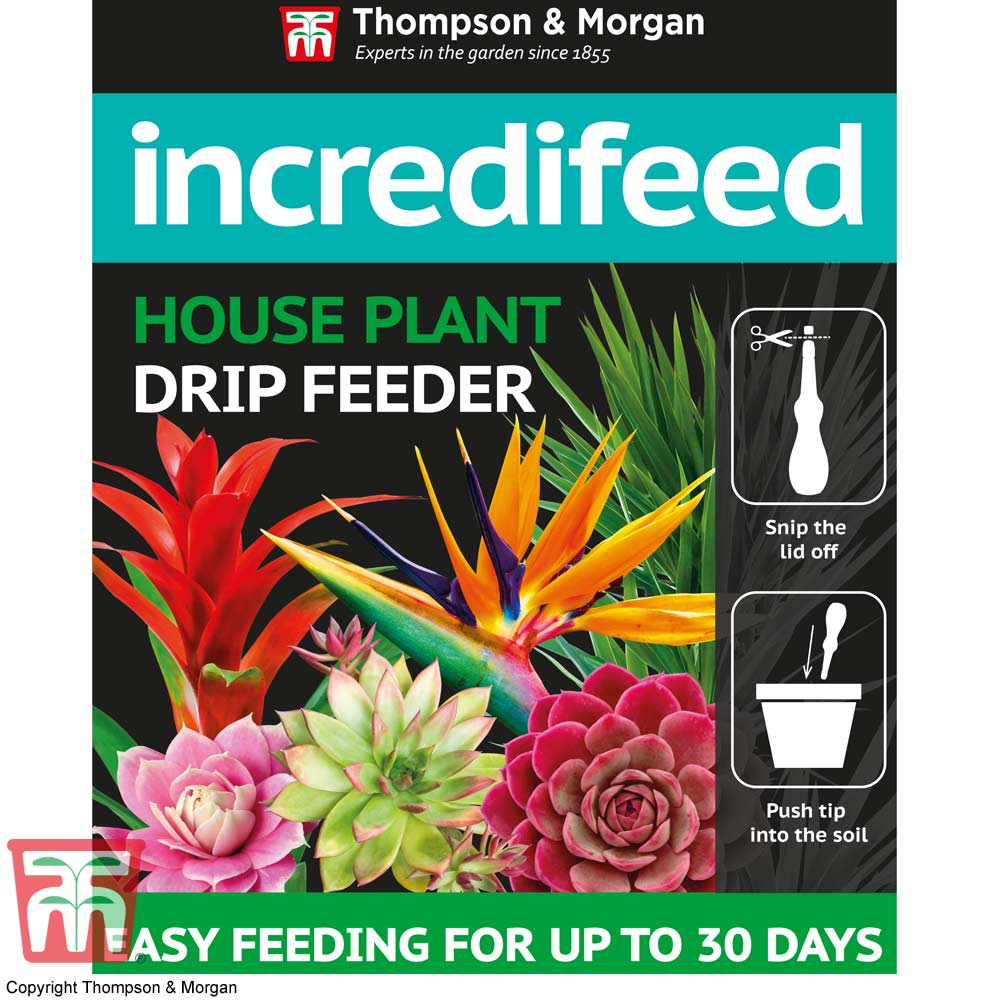 Image of IncrediFeed House Plant Drip Feeder