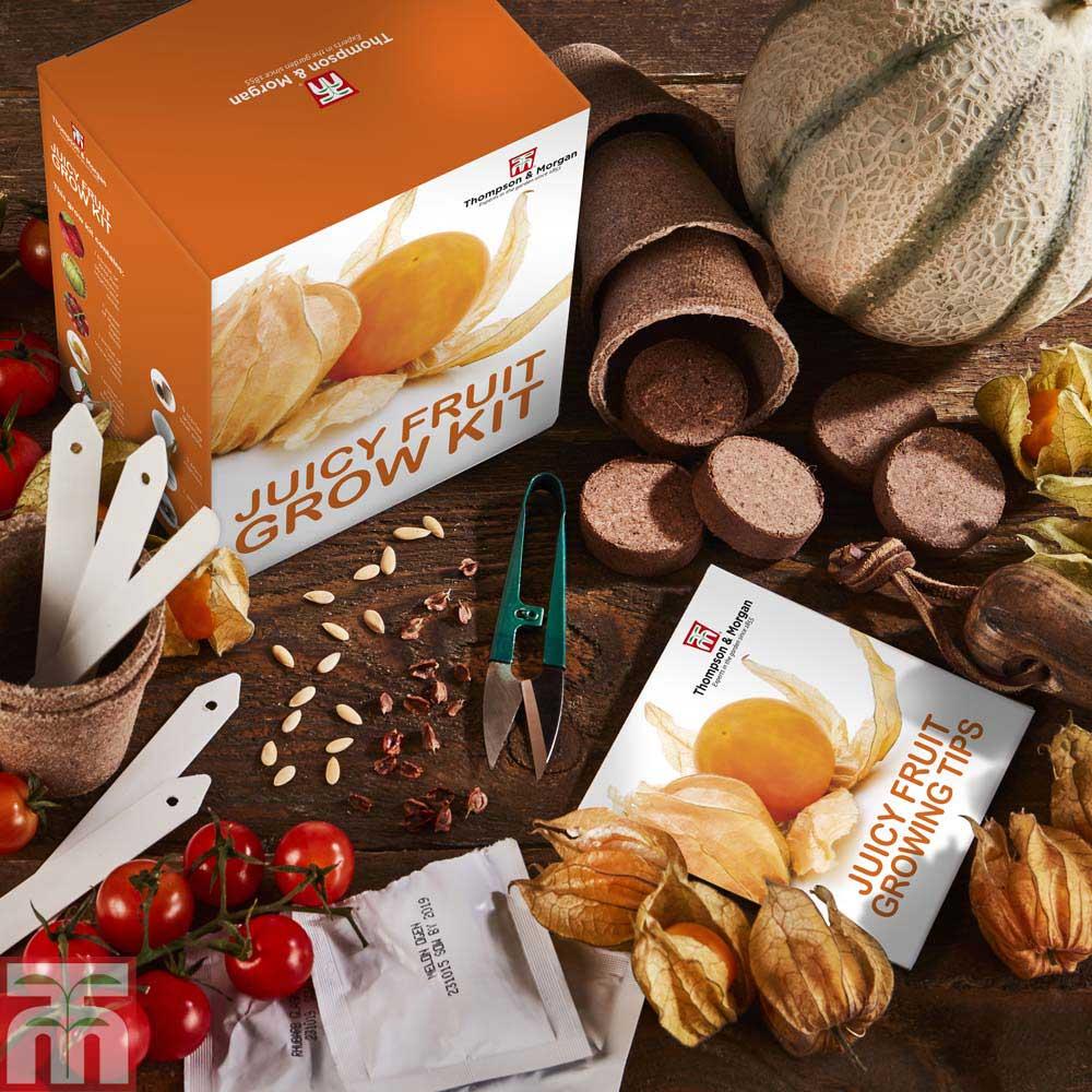 Image of Juicy Fruit Growing Kit