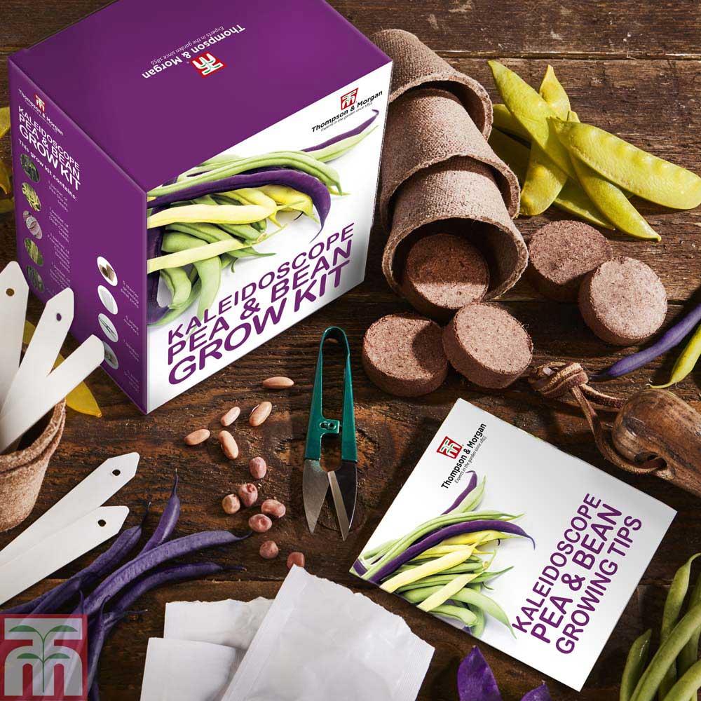 Image of Kaleidoscope Pea & Bean Growing Kit