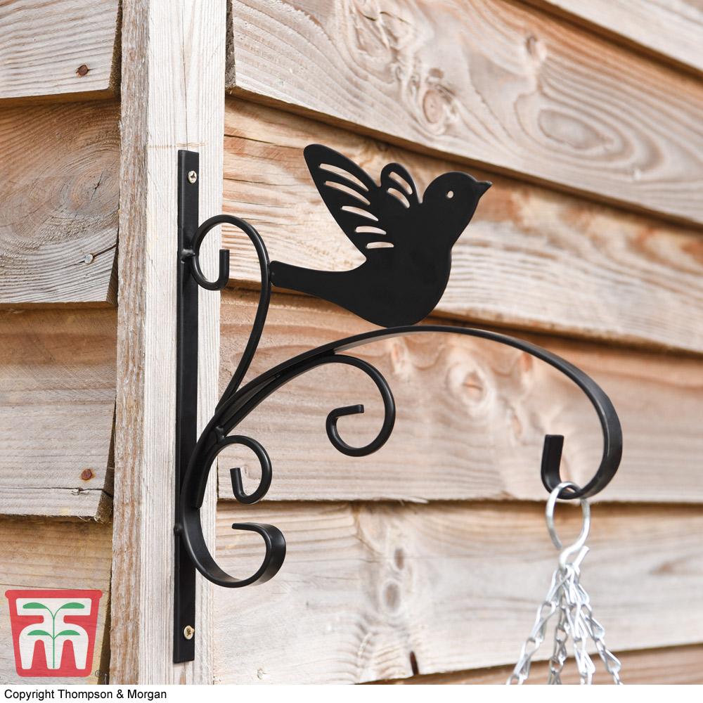 Image of King Swallow Garden Bracket