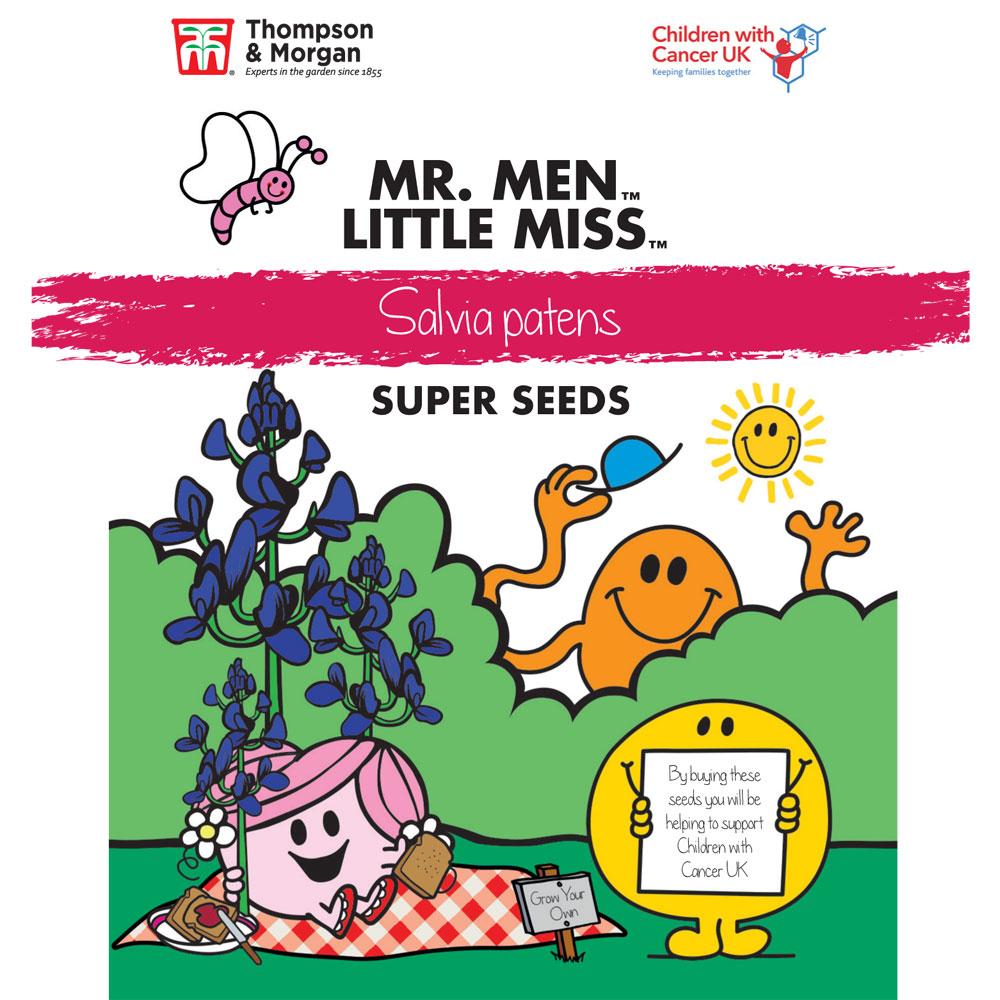Image of Mr. Men™ Little Miss™ Salvia patens