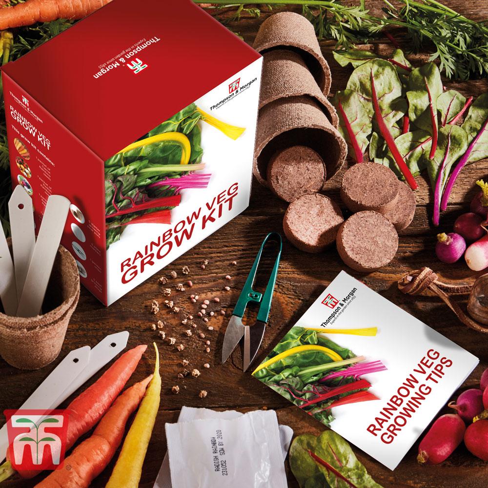 Image of Rainbow Vegetable Growing Kit - Gift