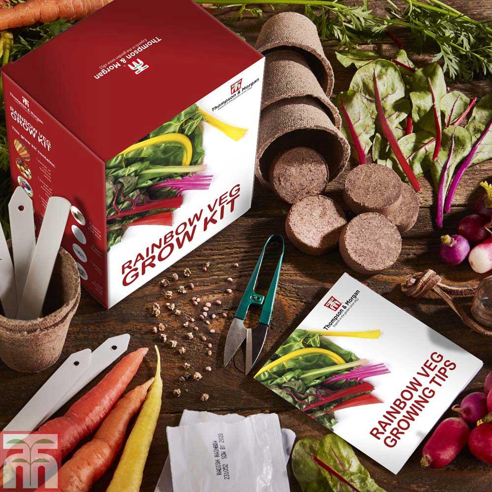 Image of Rainbow Vegetable Growing Kit