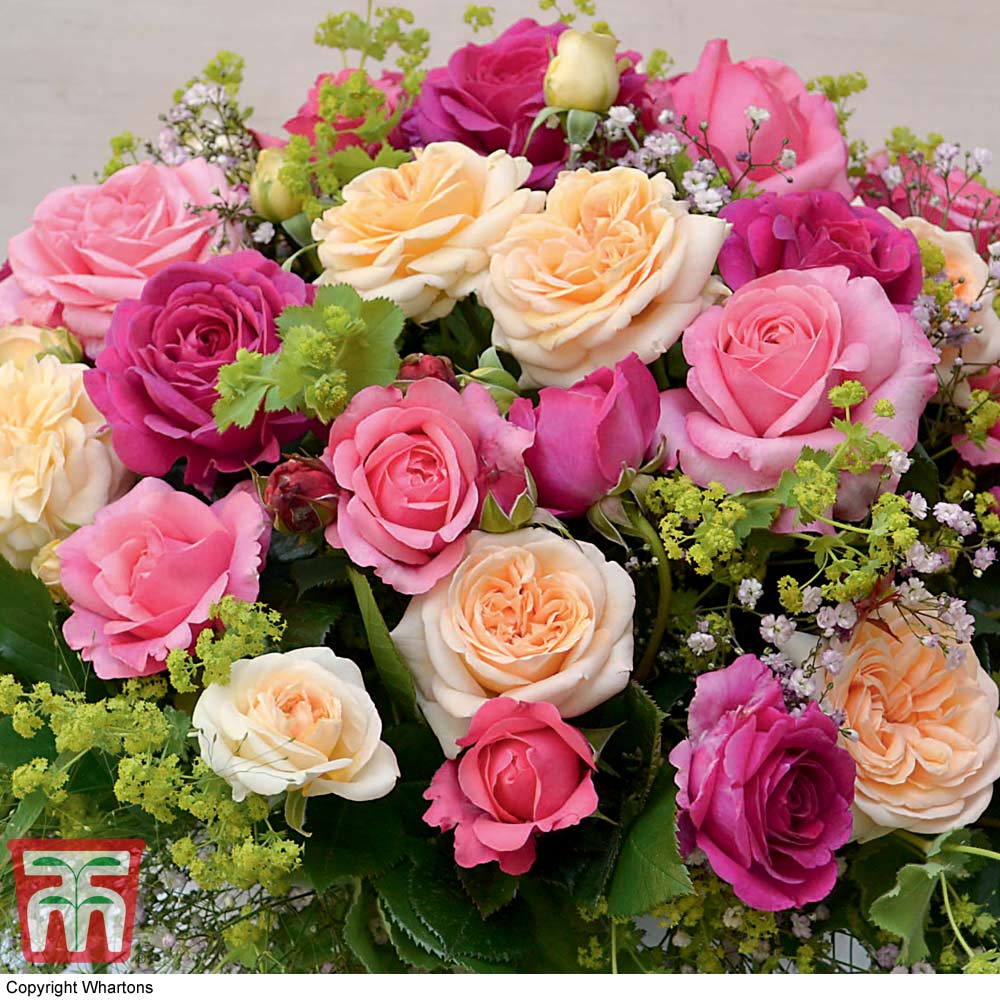 Image of Rose Home Florist Timeless Collection