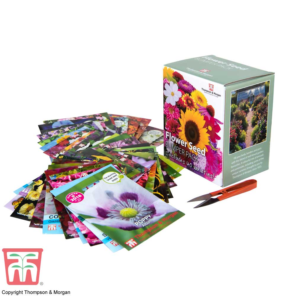 Image of Flower Seed Box Bumper Pack