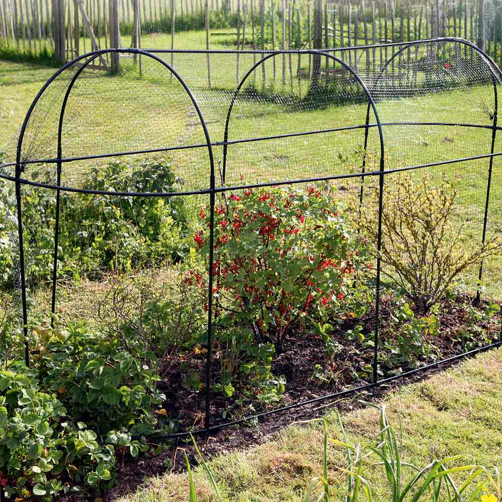 Image of Steel Long Fruit Cage