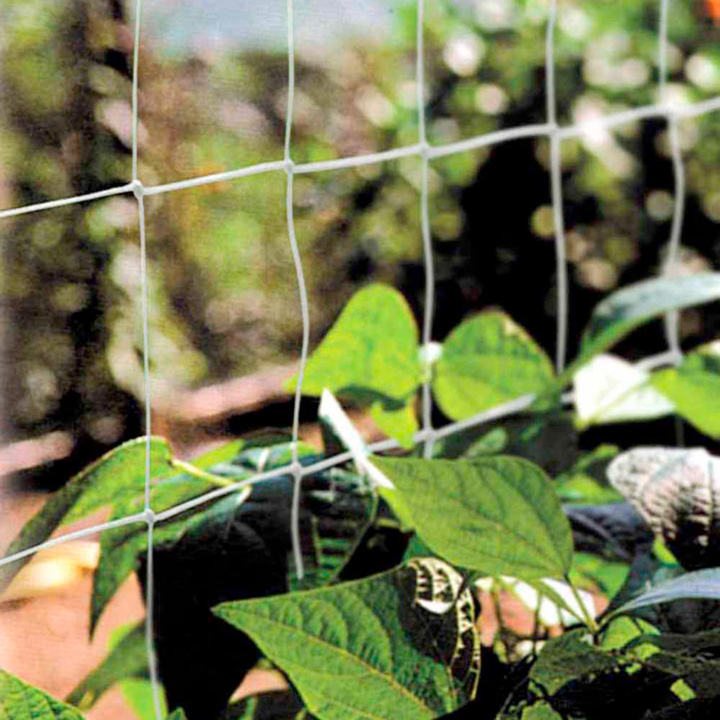 Image of Pea and Bean Netting 2M x 11M