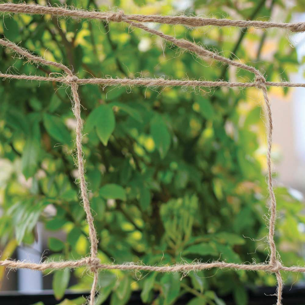 Image of Biodegradable Netting 2 X 5m