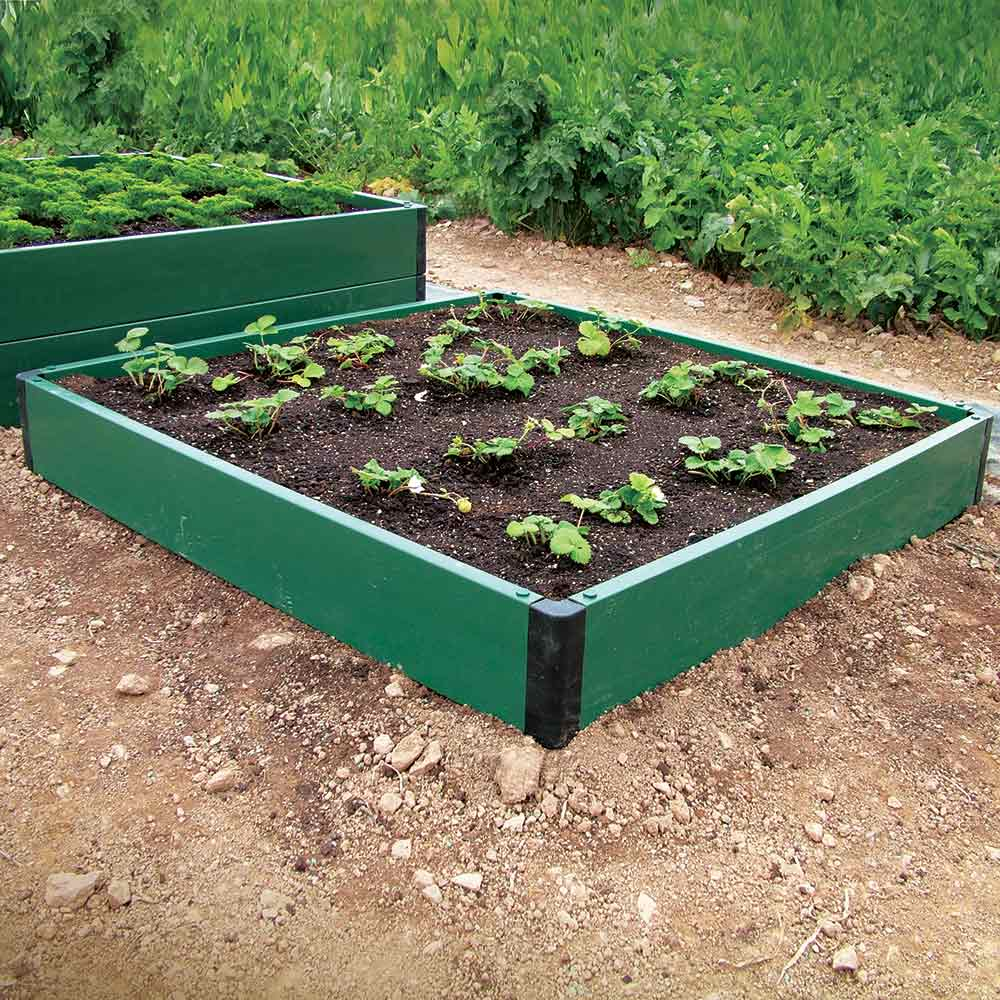 Image of Build-a-Bed Single Raised Bed 1msq