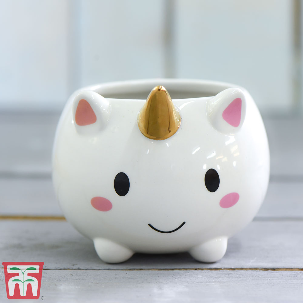Image of Unicorn Pot with Gold Horn