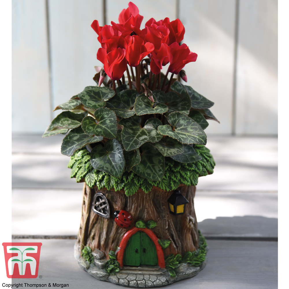 Image of Woodland Ladybird Planter