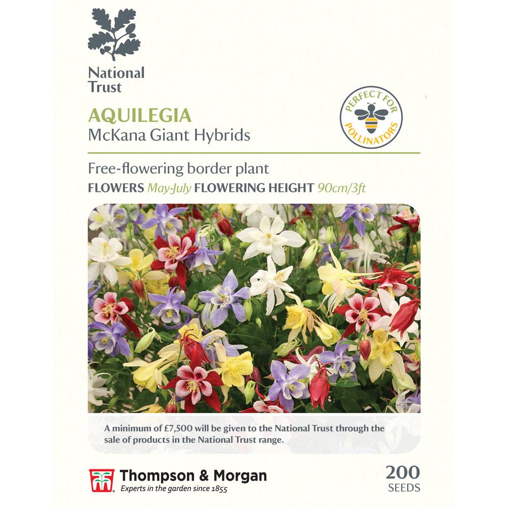Image of Aquilegia x hybrida 'McKana Giants Mixed' (National Trust)