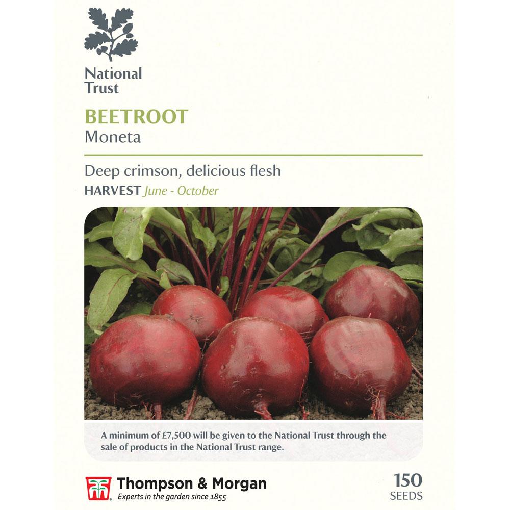 Image of Beetroot 'Moneta' (National Trust)