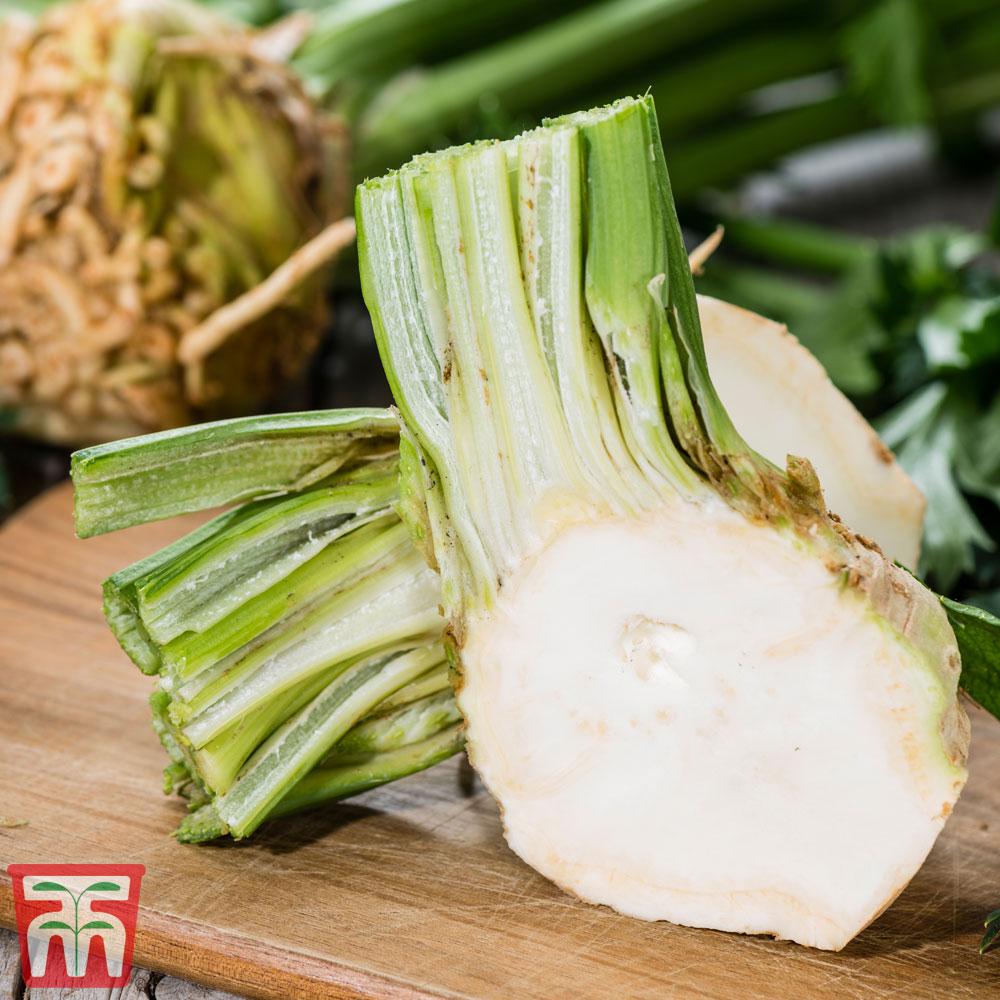 Image of Celeriac 'Brilliant'