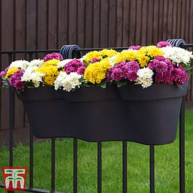 Balcony Planter