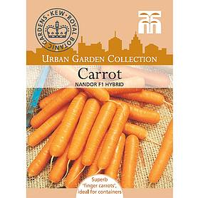 carrot nandor f hybrid  kew collection seeds