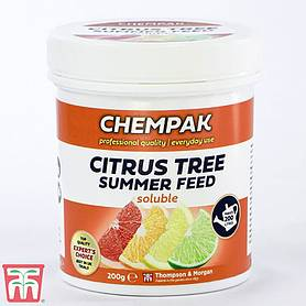 Chempak® Summer Food for Citrus Trees