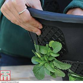 easy fill hanging basket