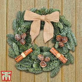 fresh frosted woodland wreath  gift