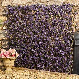 expandable artificial hedge trellis  purple lavender