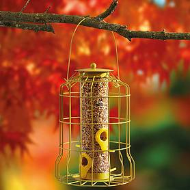 Kingfisher Yellow Powder Coated Squirrel Proof Guard Seed Feeder
