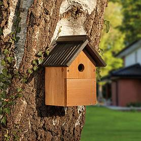 Multi-Purpose Nesting Box
