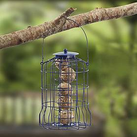 Nature's Market Wild Bird Suet Ball Feeder with Squirrel Guard
